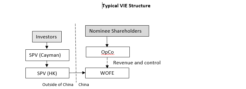 Vie Like Structure Affirmed By Supreme Peoples Court In China